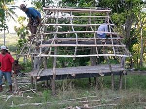 Sebuah tegida sedang dibangung oleh kaum laiki-laki dari kelompok wini Ga. Depe, Seba