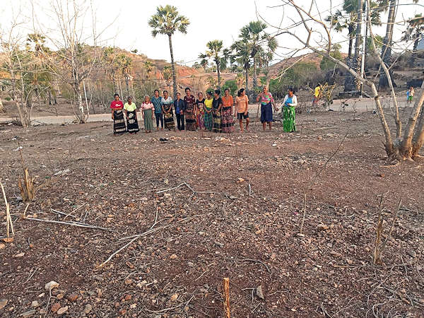 weavers on community house plot savu